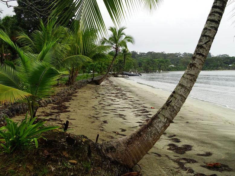 Playa-Chiquita-Costa-Rica