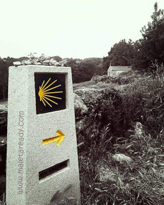 camino_de_santiago