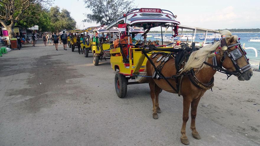 Taxis_Gili-Trawangan-Indonesia