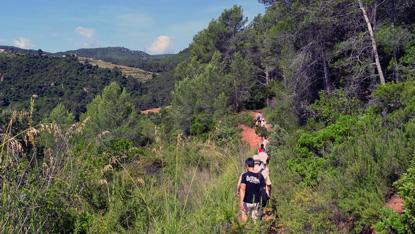 path-to-mountain