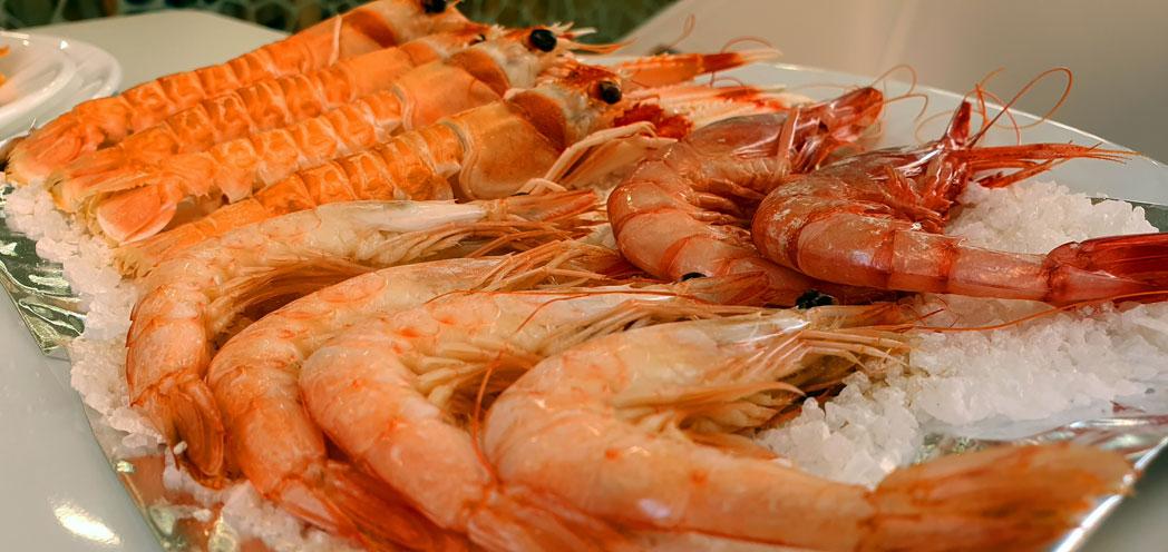 mejores-zonas-para-comer-en-Granada